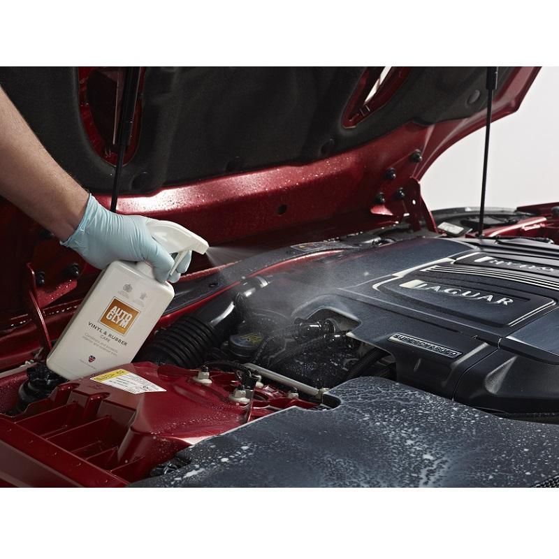 czyszczenie silnika